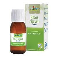 RIBES NIGRUM MG 60ML INT